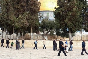 300 settlers broke into Al-Aqsa this week